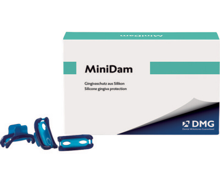 DMG MiniDam